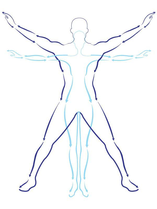 Symbol Physical Therapy Icon