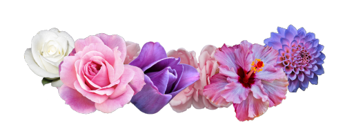 Pink And Purple Flower Crown Png image #42599