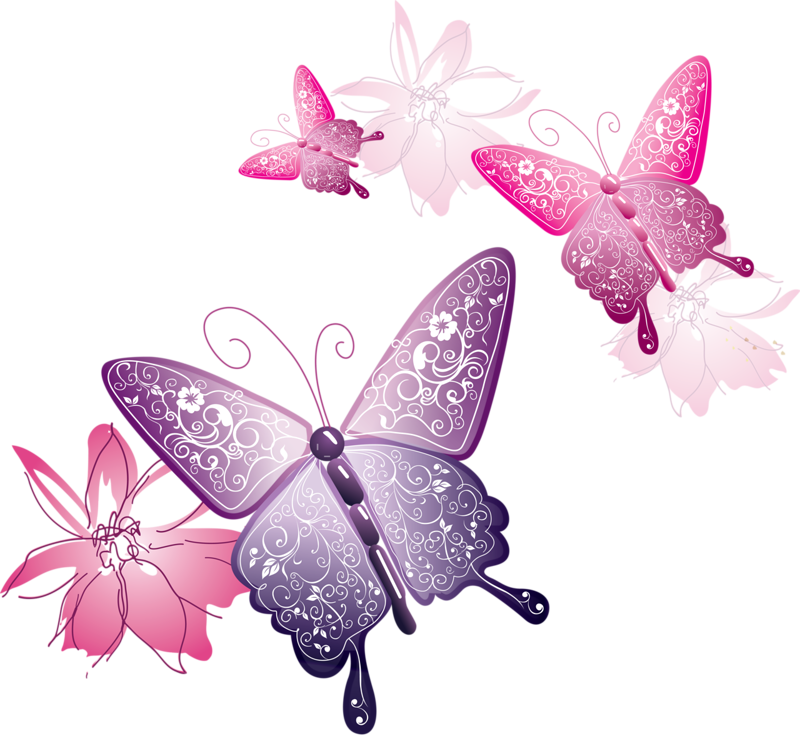 Pink Butterfly Png image #6742