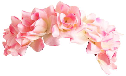 Pink Flower Crown Png image #42611