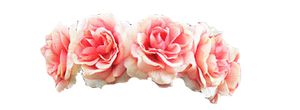 Pink Flower Crown PNG image #42590