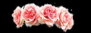 Queen AnneMarie of Greece  Wikipedia