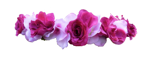 Pink Rose Flower Crown Png image #42601
