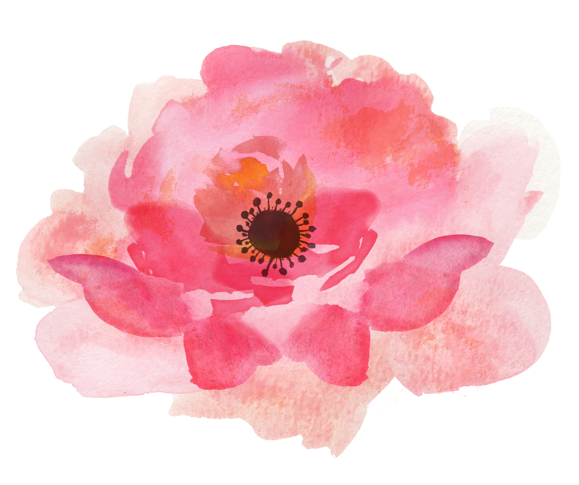 Pink Watercolor Flowers High-quality Png image #46956