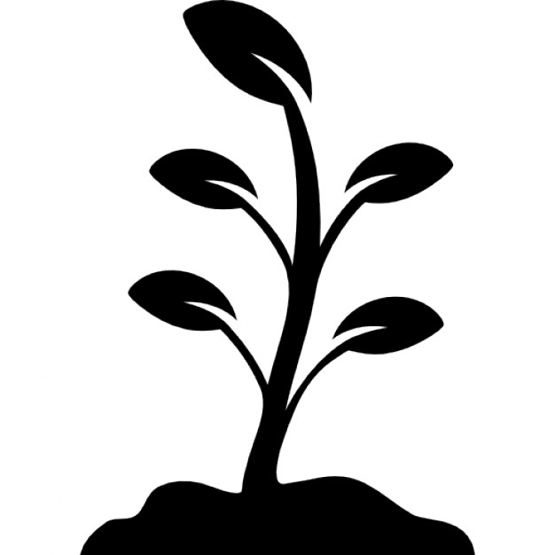 Png Icon Plant Free image #34781
