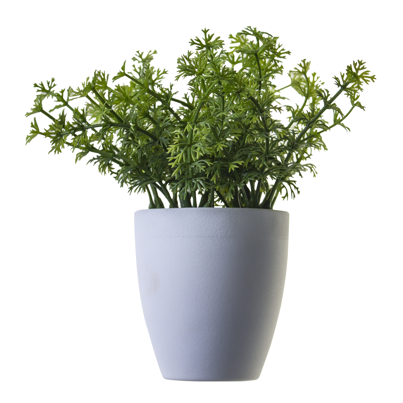 Plant Png Image Potted Flower 44904 Free Icons And Png