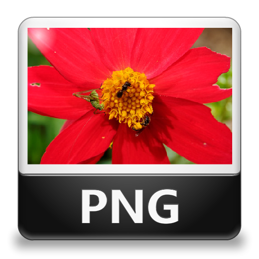 Png File Type Icon image #20434