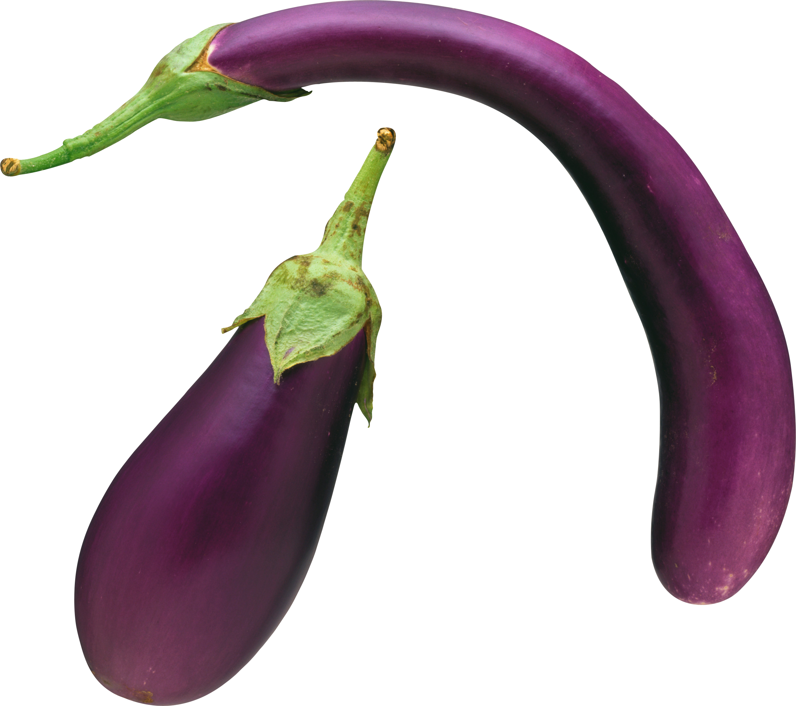 Png Format Images Of Eggplant