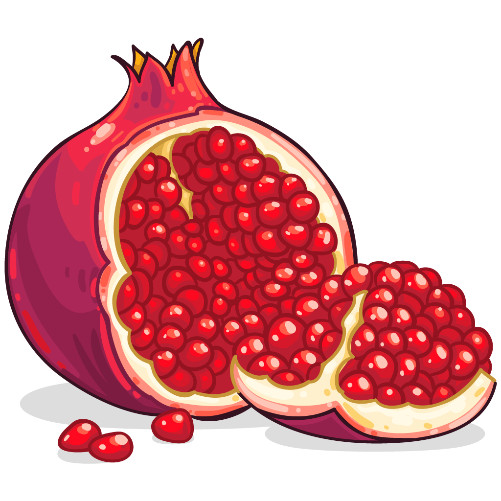 Icon Free Download Pomegranate Vectors image #27822