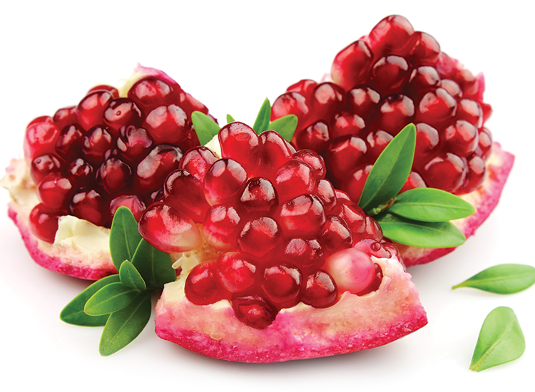Download For Free Pomegranate Png In High Resolution image #27823