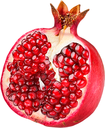 Free Download Pomegranate Png Images image #27841