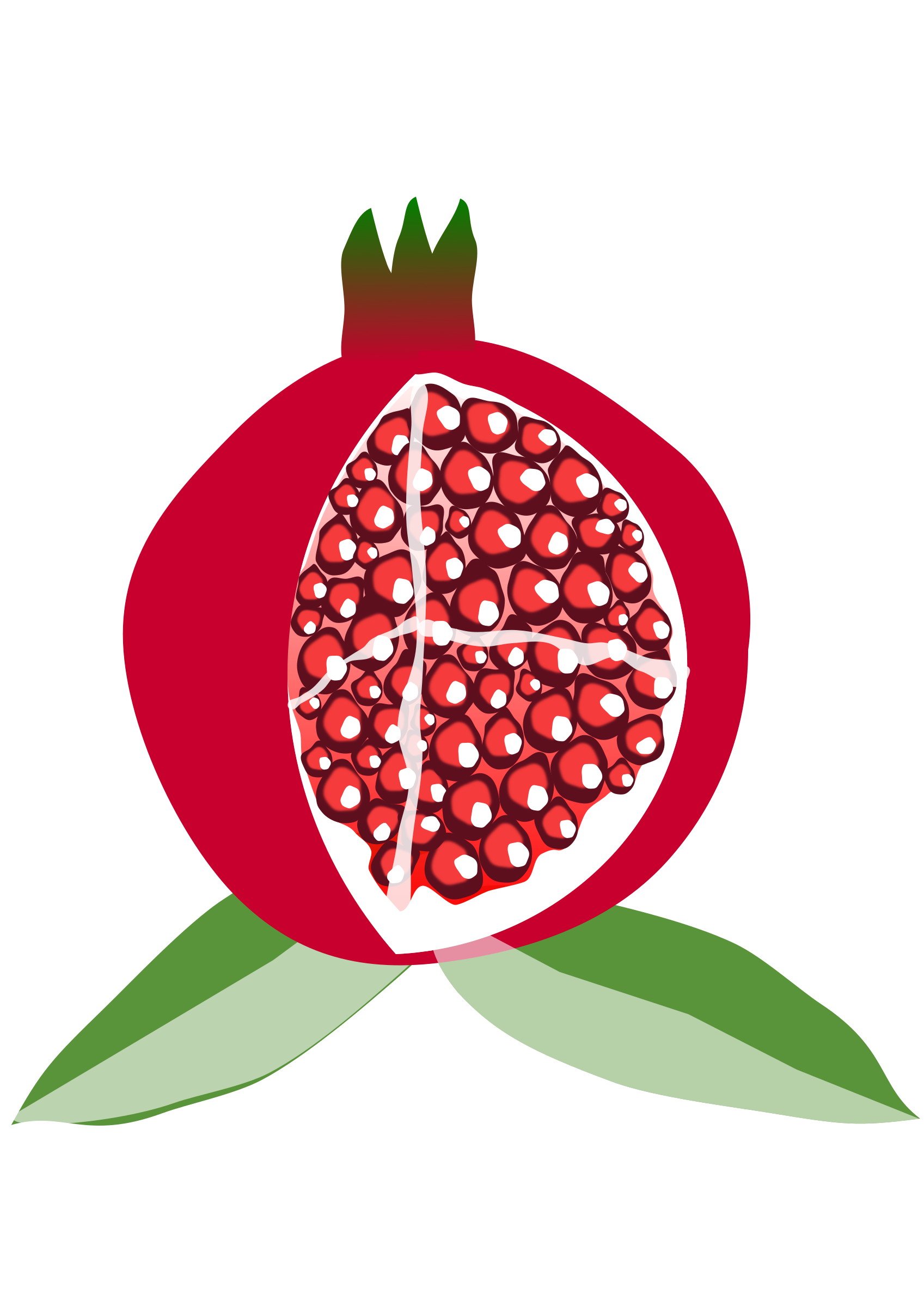 Pomegranate Png Available In Different Size image #27847