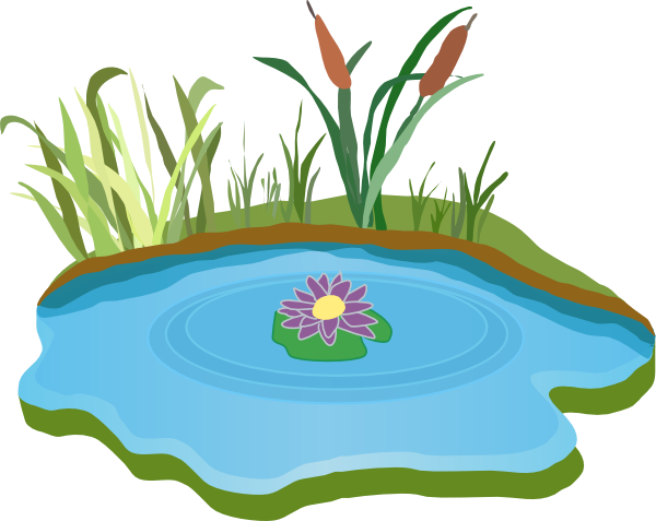 Get Pond Png Pictures