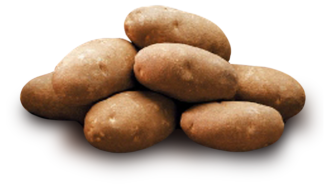Png Format Images Of Potato image #38721