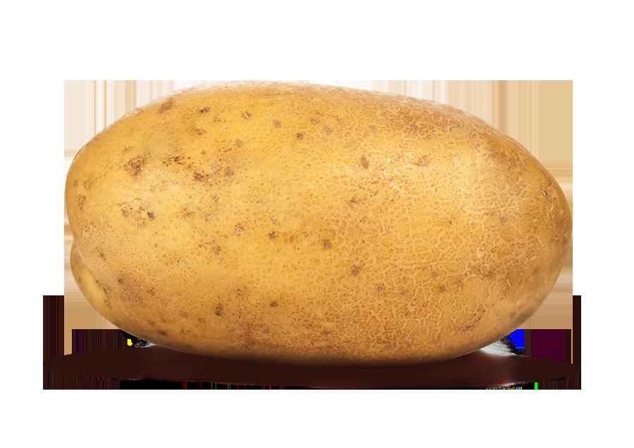 potato png