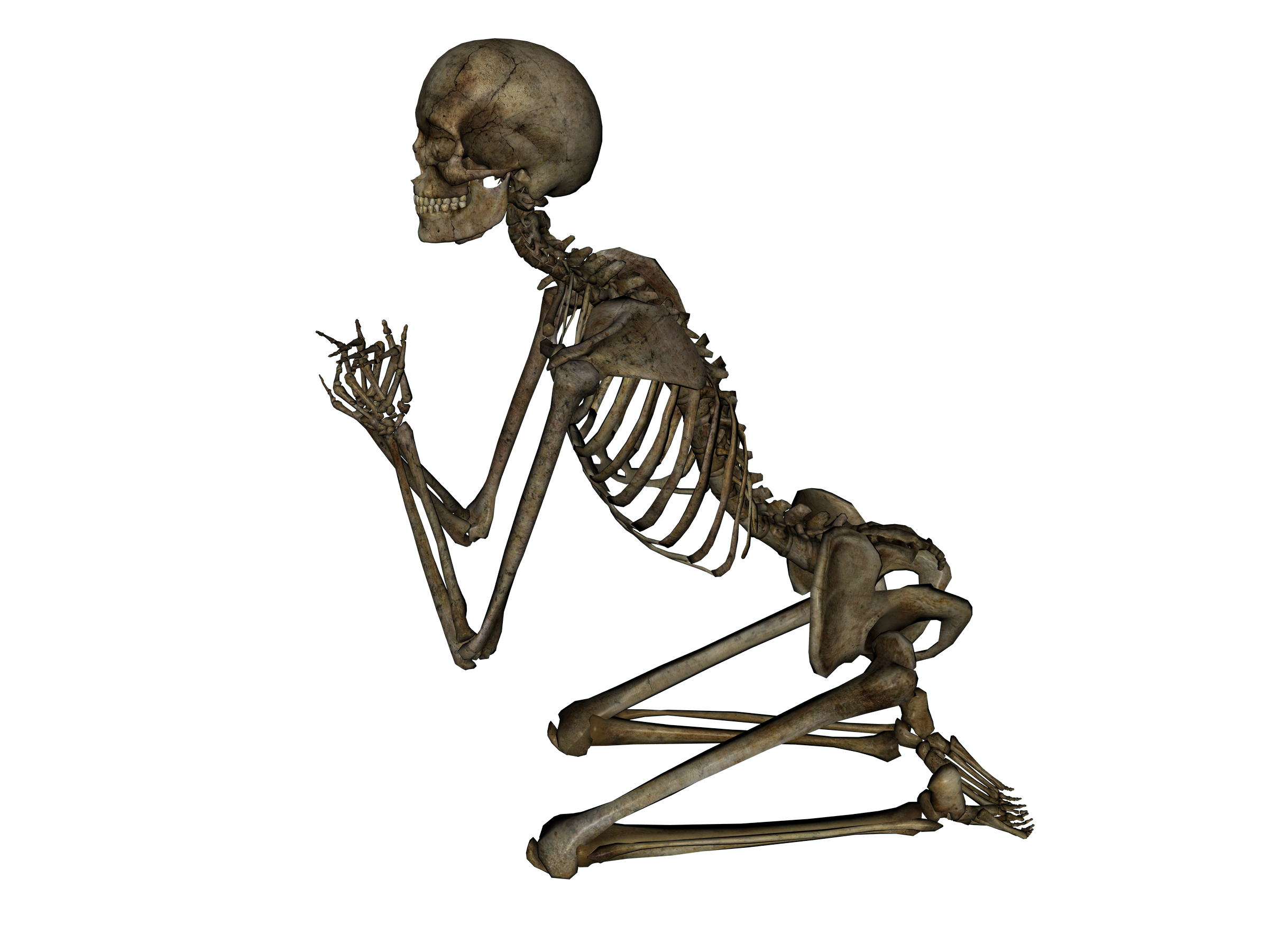 Praying Skeleton Png image #43853