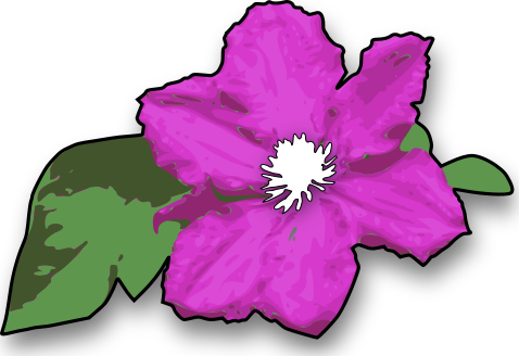 PNG Image Purple Flower image #6218
