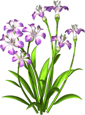 Purple Flower Png image #6209