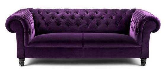 Amazoncom couch