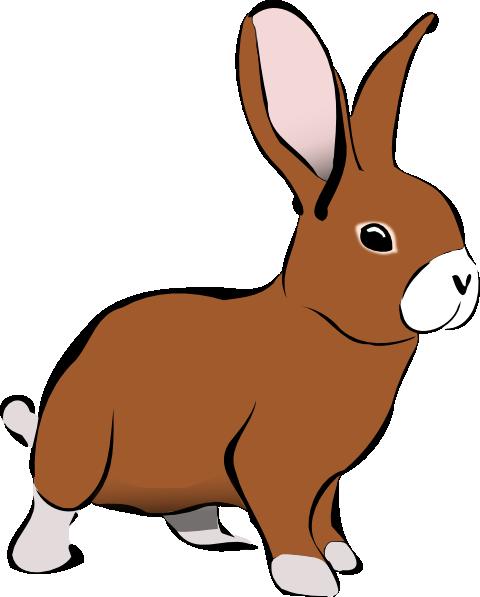 Rabbit Png Clip Art image #40341