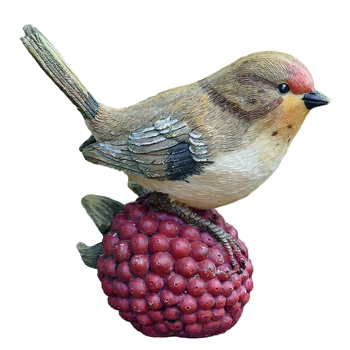 Raspberry And Wren Transparent Background image #47830