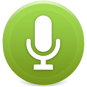 Recorder Icon Size image #33733