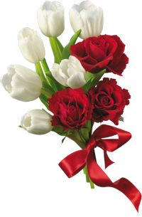 Red and white spring flowers PNG