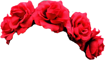 Red Flower crown png