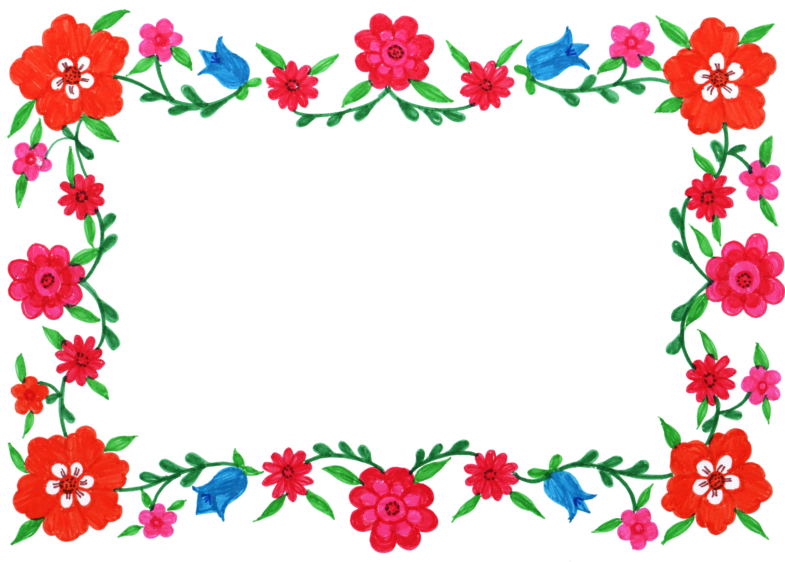 Red Flower Images Of Video Frame image #47688