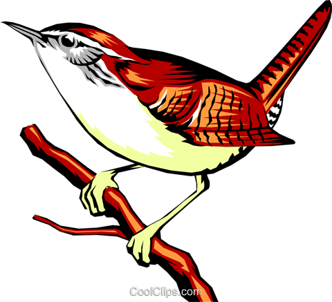 Red Wren Png Images image #47835