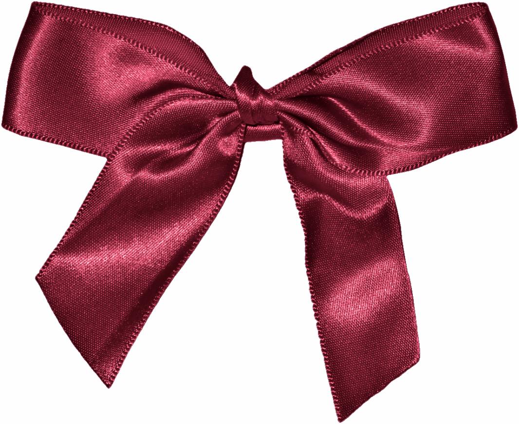 Ribbon, Bow PNG image #42260