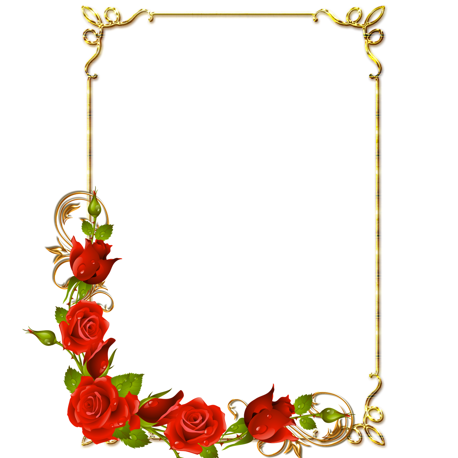 Frames Floral Em Png: Photo Frame Transparent PNG Pictures