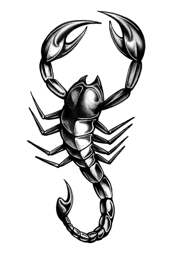Scorpion Tattoo Png image #19387