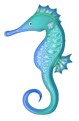 Photo Seahorse PNG image #24551