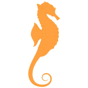 Browse And Download Seahorse Png Pictures image #24543
