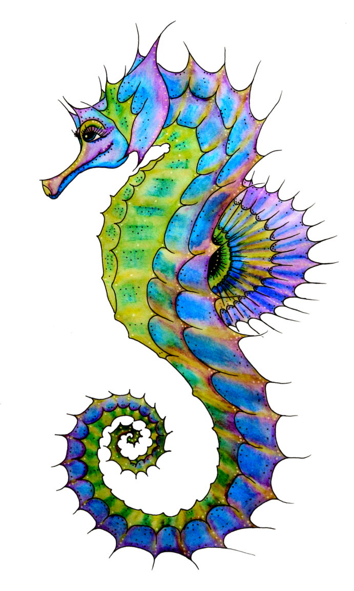 Seahorse In Png image #24545