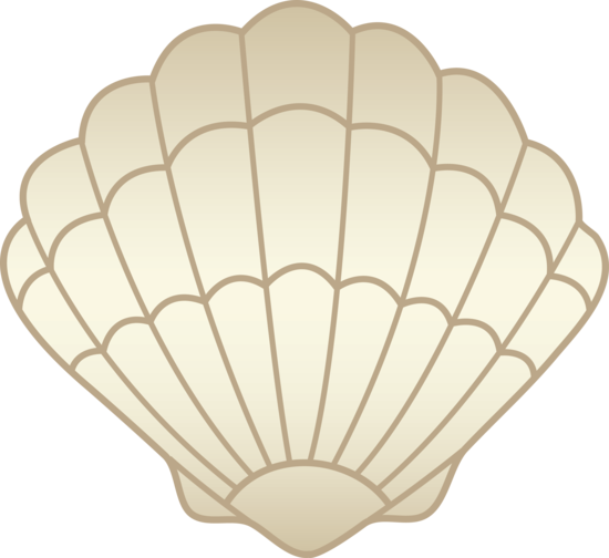 Download High-quality Seashell Png image #24625