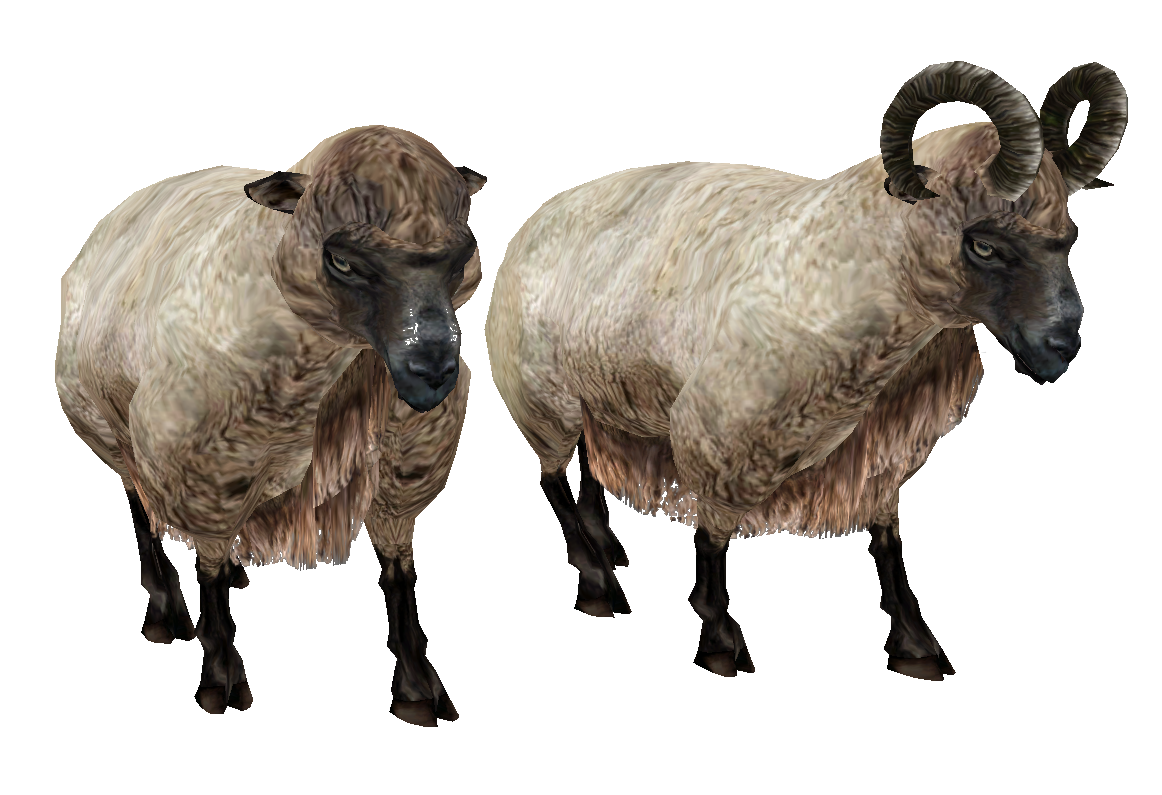 Sheep Png Available In Different Size image #23167