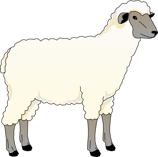Download And Use Sheep Png Clipart image #23177