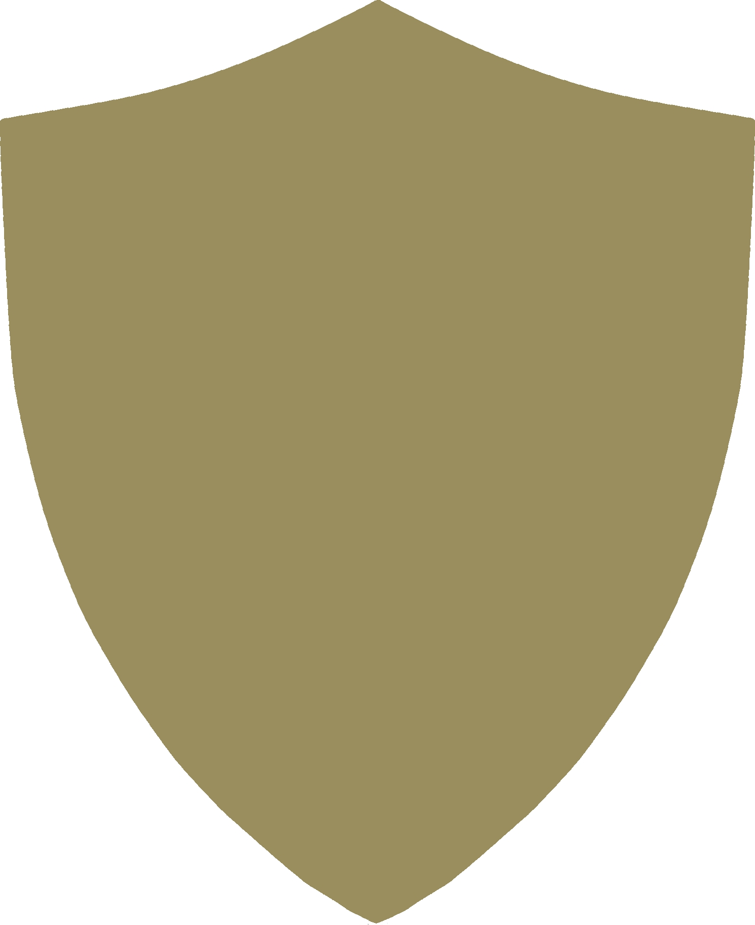 High Resolution Shield Png Clipart image #23080