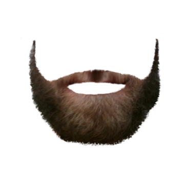 short beard png