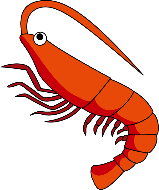 Shrimps png clipart #34974 - Free Icons and PNG Backgrounds