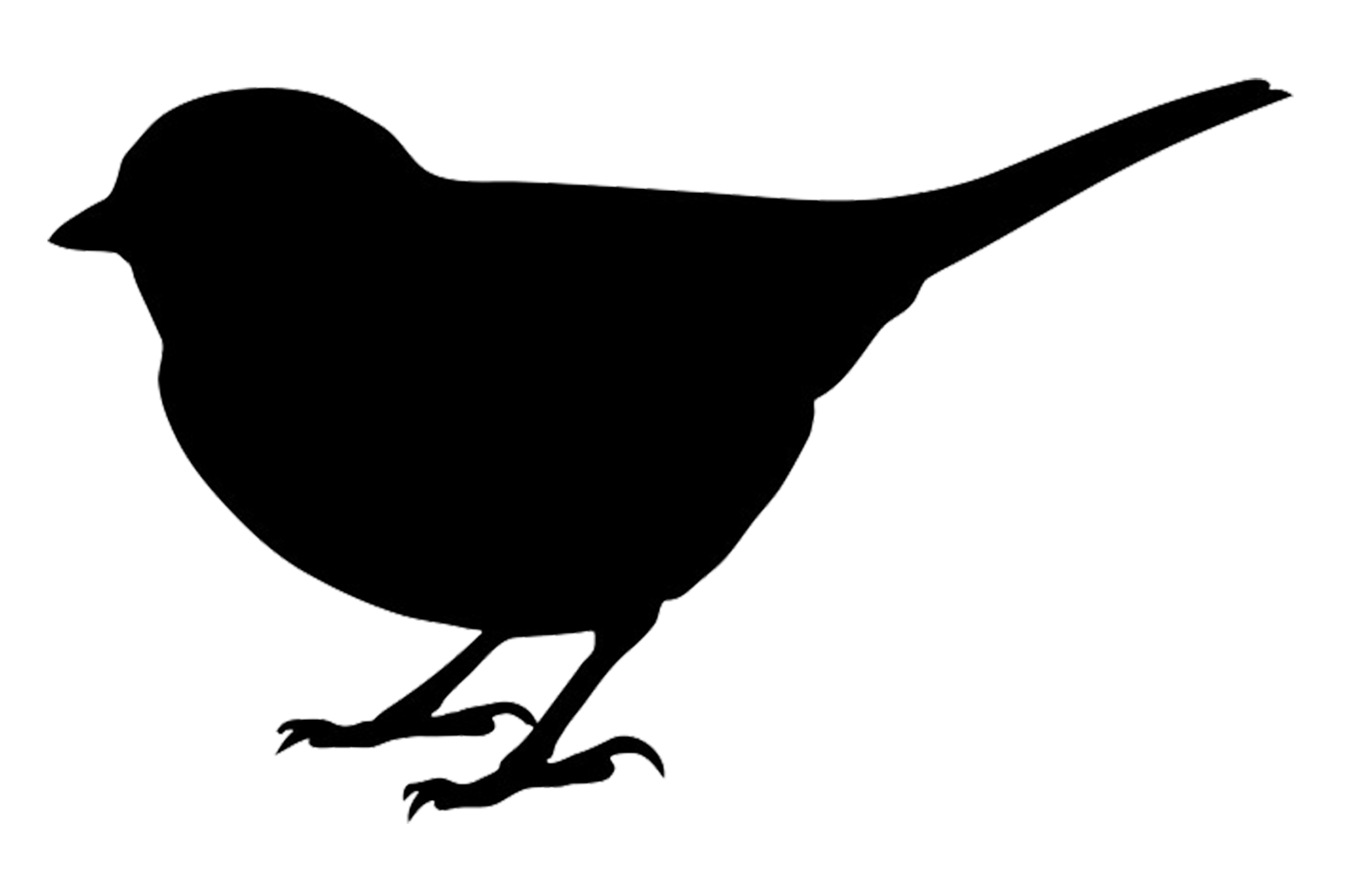 Silhouette small bird PNG