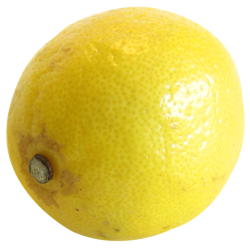 Single Lemon Png image #38669