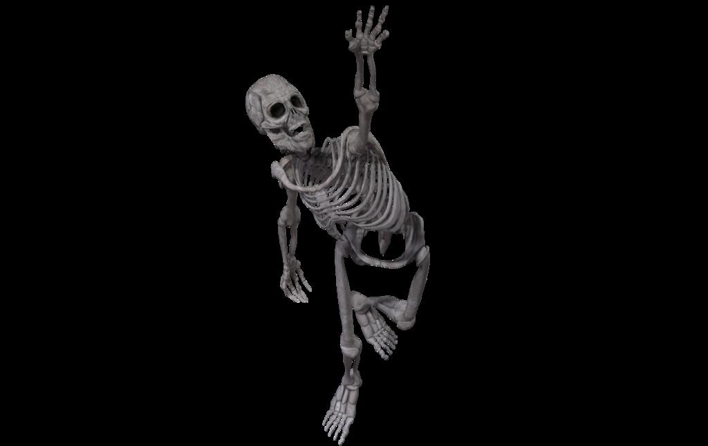 Skeleton face png