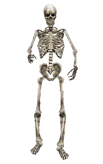 Skeleton MW png