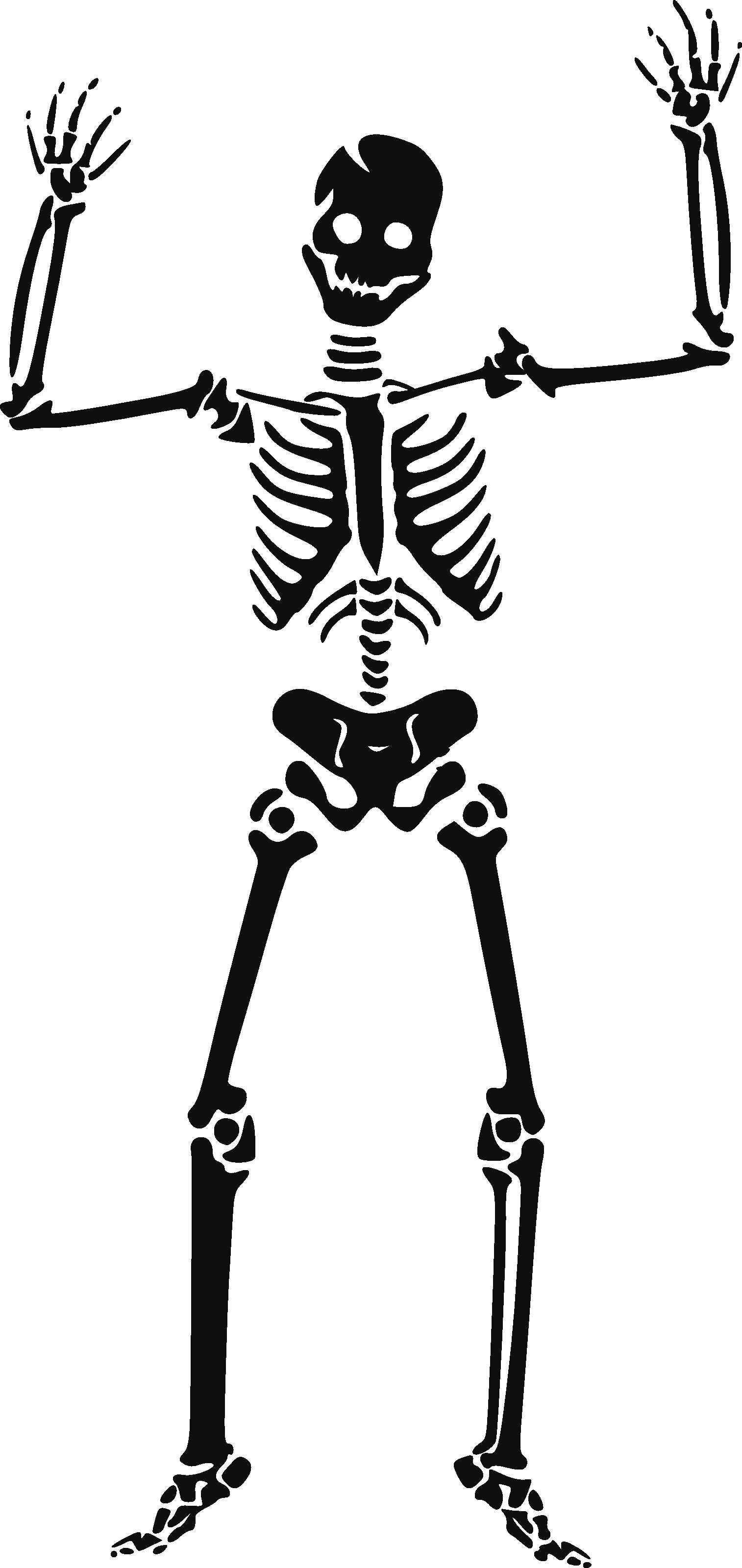 Skeleton siluet PNG