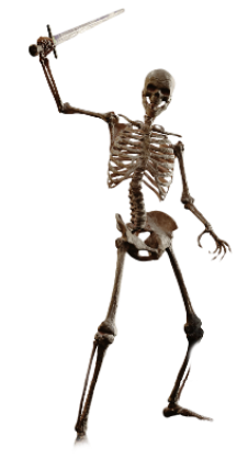 Skeleton Warrior Png image #43866