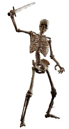Skeleton warrior png