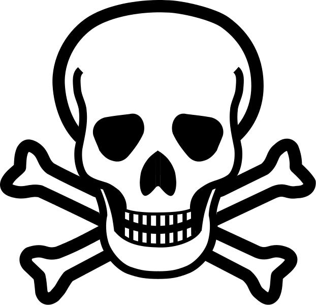 Skull And Crossbones PNG Picture image #27235